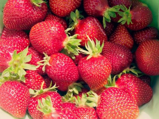 twohonesttruths_muriwai_strawberry23